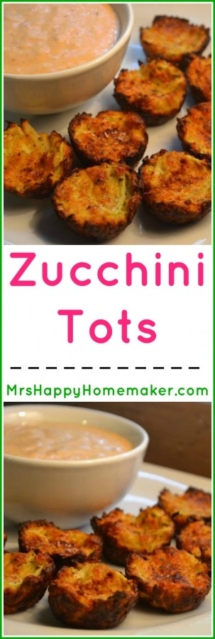 Zucchini Tots - like tater tots but no potatoes are used, just zucchini. Served next to a bowl of chipotle ranch sauce to dip in
