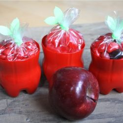 Plastic Bottle Apples