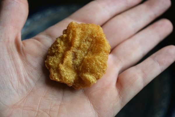 My McNugget Experiment - my chicken evaporated!