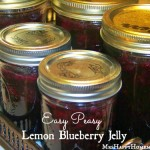 Easy Lemon Blueberry Jelly - this recipe is SO easy, and doesn't call for pectin at all!  Would you believe jello is the secret?  Gotta check this one out!
