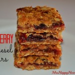 Cranberry Streusel Bars