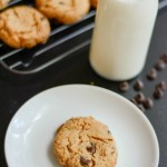 Gluten Free Flourless Peanut Butter Chocolate Chip Cookies