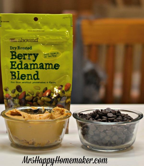 Easy Dark Chocolate Peanut Butter Energy Bites