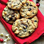 Cranberry Double Chocolate Chip Cookies