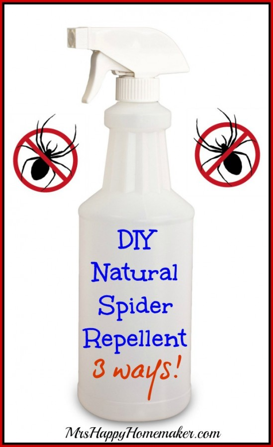 Diy natural spider repellent 3 ways mrs happy homemaker Natural spider repellent