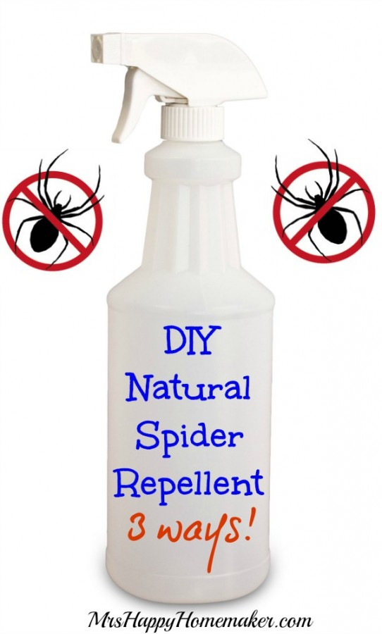 Don't like spiders in your house but don't want to use chemicals to get rid of them? Here's 3 simple ways to make your own DIY Natural Spider Repellent! | MrsHappyHomemaker.com @MrsHappyHomemaker
