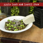 Apple Lamb & Lentil Stew ~Guest Post~