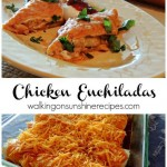 Chicken Enchiladas ~Guest Post~
