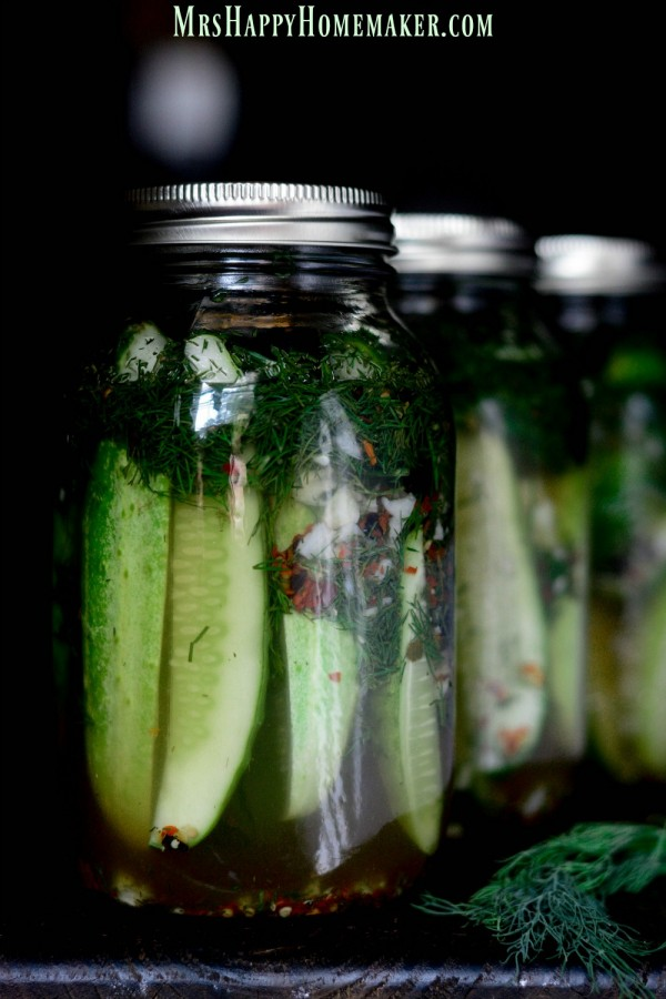 SPICY GARLIC DILL REFRIGERATOR PICKLES - they can be whipped up in a jiffy & since they are refrigerator pickles, you don't have to worry with the whole canning process & your pickles are ALWAYS crunchy & never soggy! | MrsHappyHomemaker.com @thathousewife
