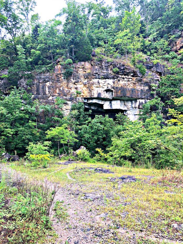 cave hidden behind bushes