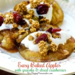 Baked Apples with yogurt, granola, & dried cranberries