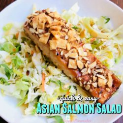 Quick and Easy Asian Salmon Salad