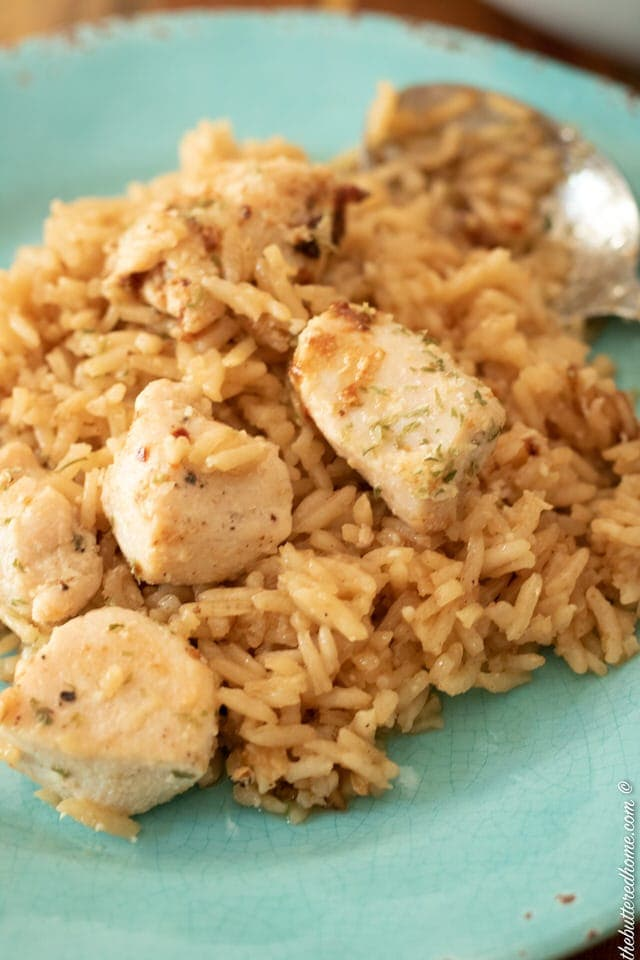 closeup of skillet chicken and rice