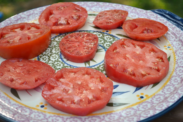sliced tomatoes on a round plate